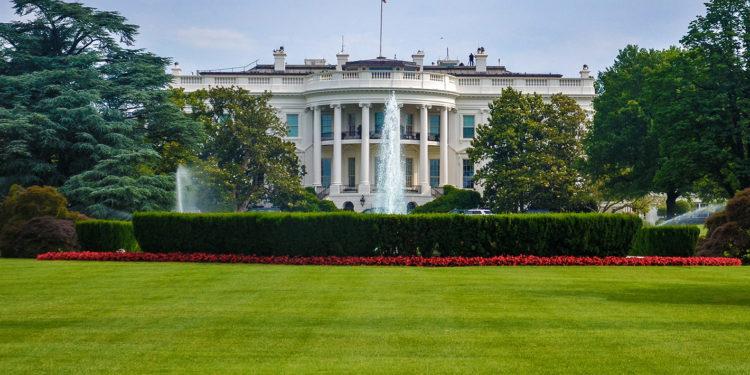 Trump's Cabinet Picks